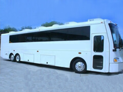 Sarnia Party Bus Limos
